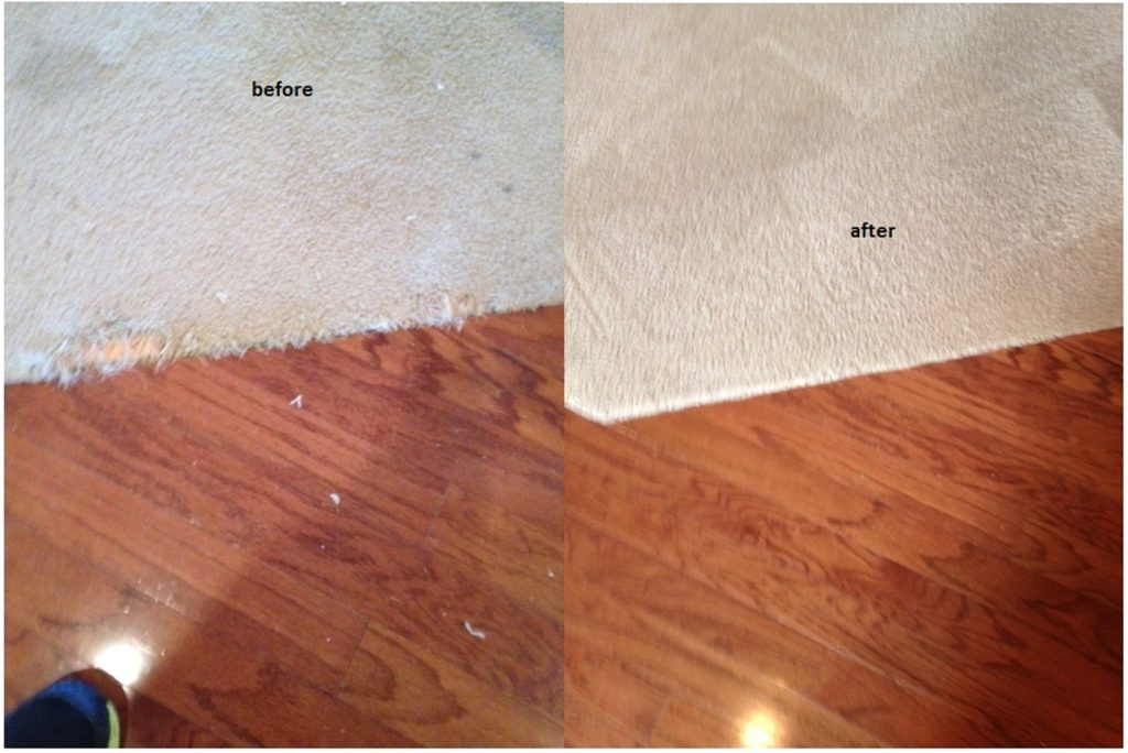 carpet repair in Savannah Ga.