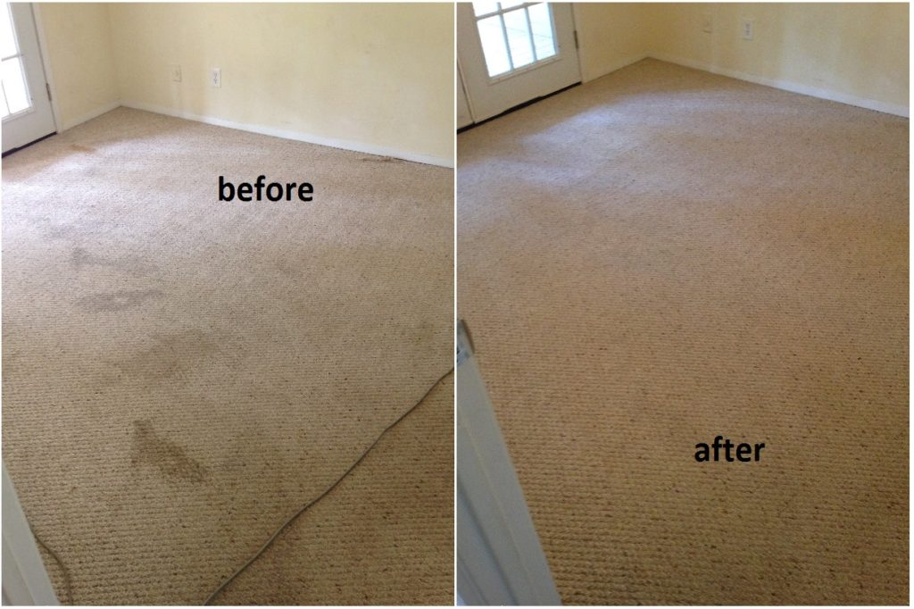 carpet cleaning results