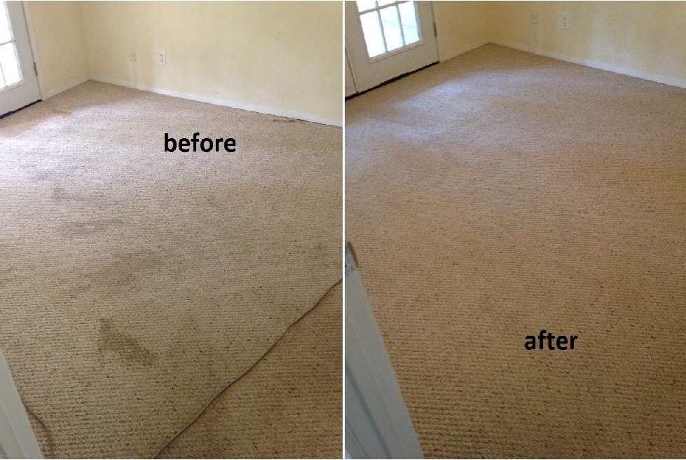 carpet cleaning in Savannah