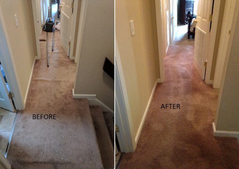 Stretch carpet to remove buckles